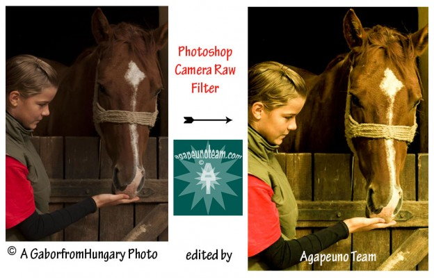 girl feeding horse Camera Raw filter Photoshop